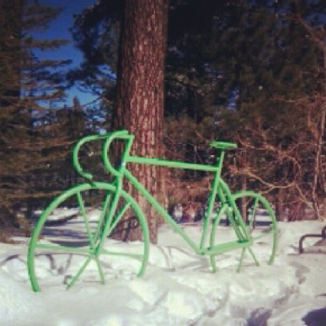 Bicycles in the snow!